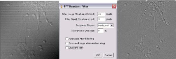 MBF_ImageJ - Intensity Processing